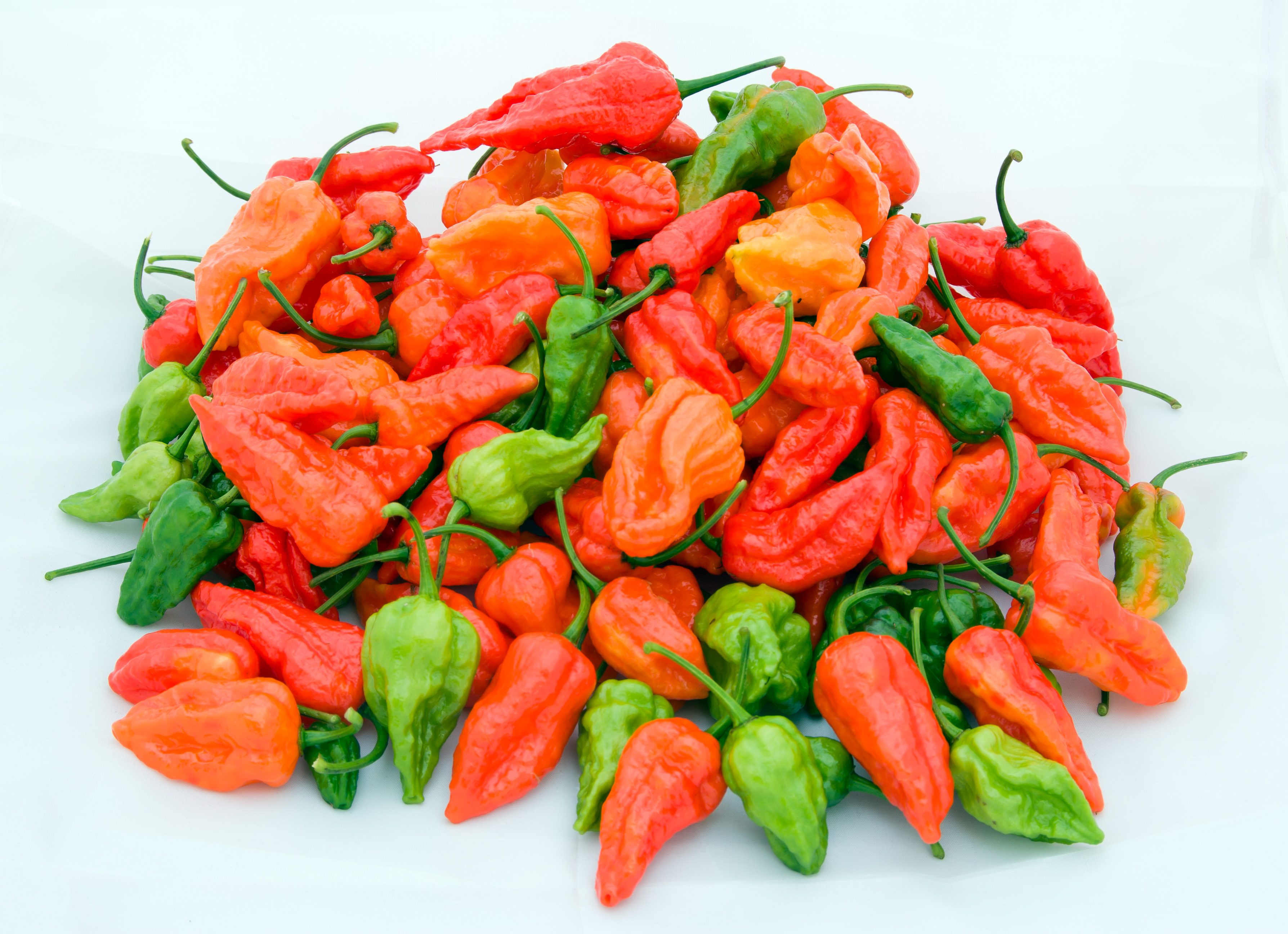 1000 Images About Hot On Pinterest Chile Chili And